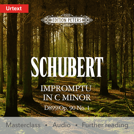 Cover - Impromptu in C minor D899/Op. 90 No. 1 - Franz Schubert